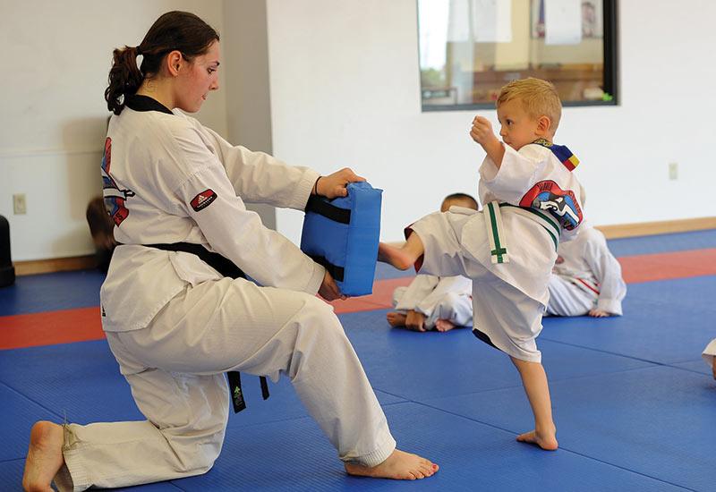 Hamburg NY Taekwondo Classes