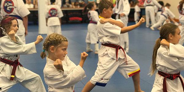 Martial Arts in Buffalo NY - Master Chong's Tae Kwon Do